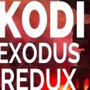 Kidi Exodus Redux